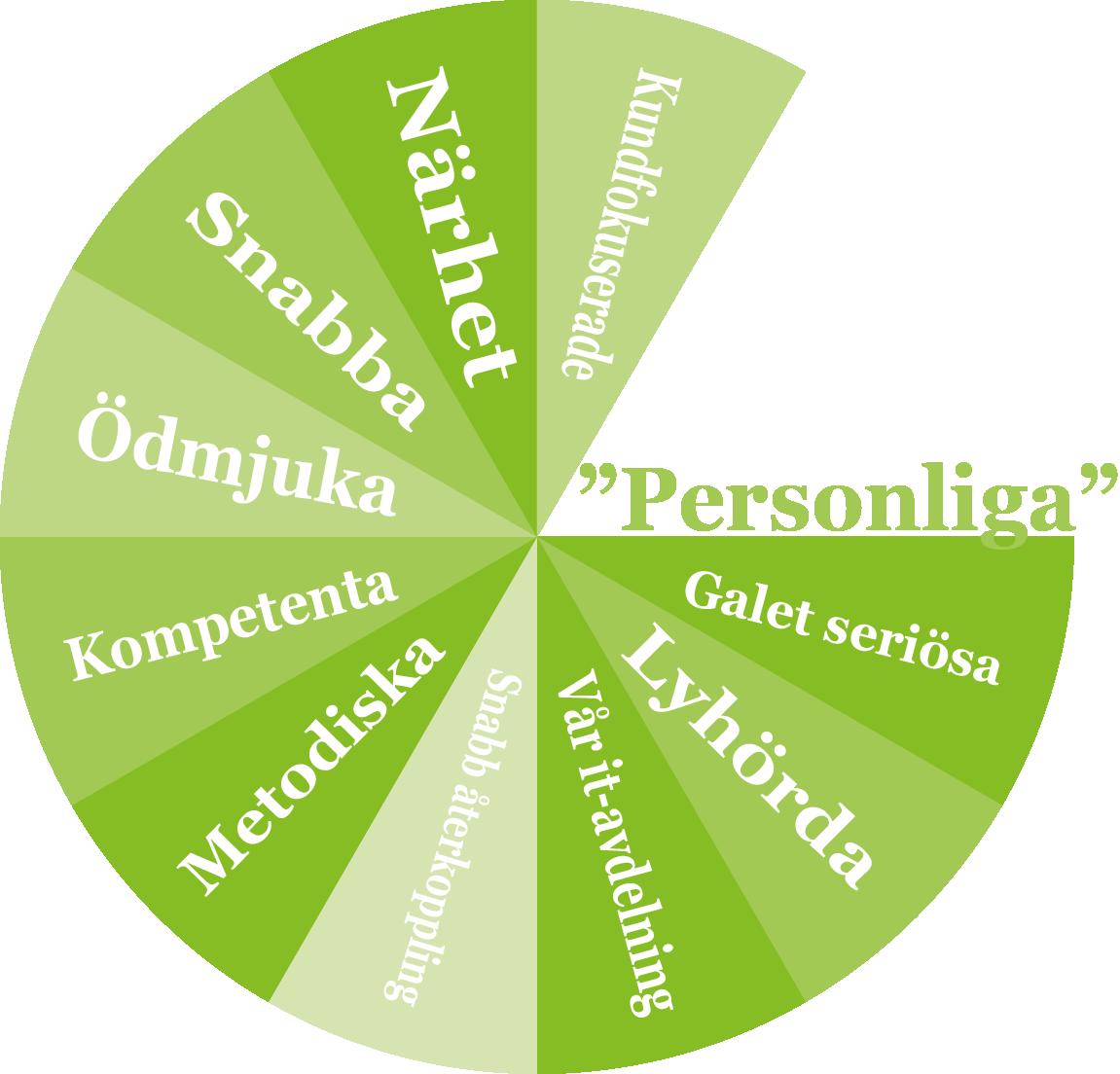 Grön-cirkel-med-citatny-circom